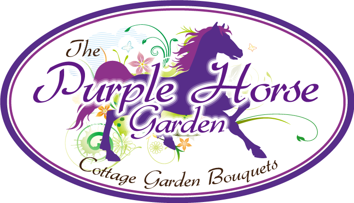 Logo for Purple Horse
